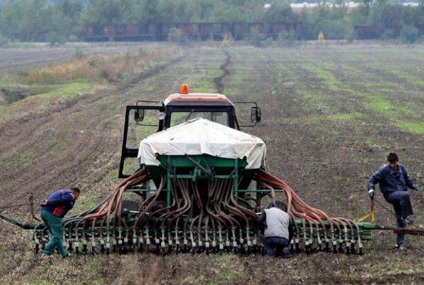 Poljoprivredni proizvodjaci