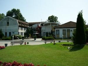 Banja Mljecanica2